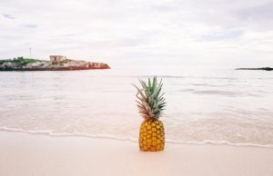 pineapple-supply-co-64393-unsplash(1)