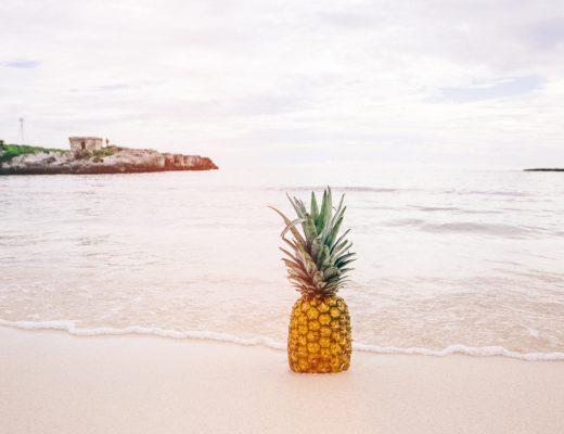 pineapple-supply-co-64393-unsplash(1)